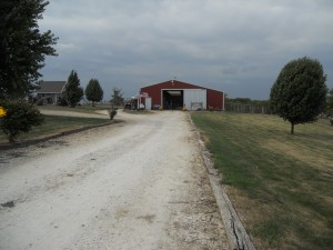 The alpaca barn, which is very nice and spacious