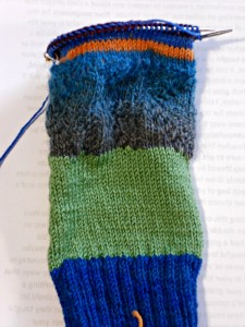 As you can see, I haven't made much progress on Pati's sock yet...