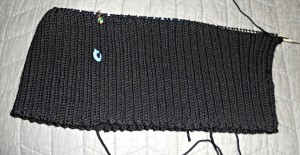 I knit a couple more inches on the sweater -- you can see my progress as indicated by the blue stitch marker where I left off last week
