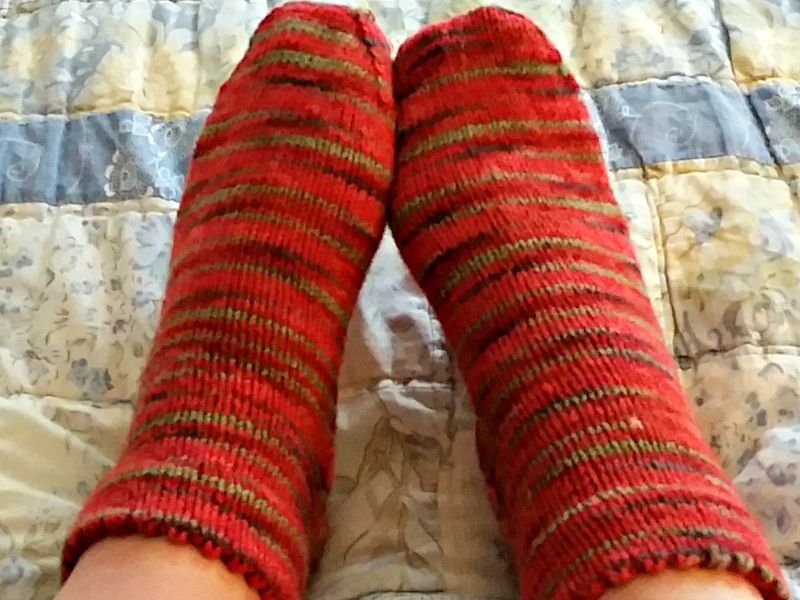 Heirloom Tomato Socks
